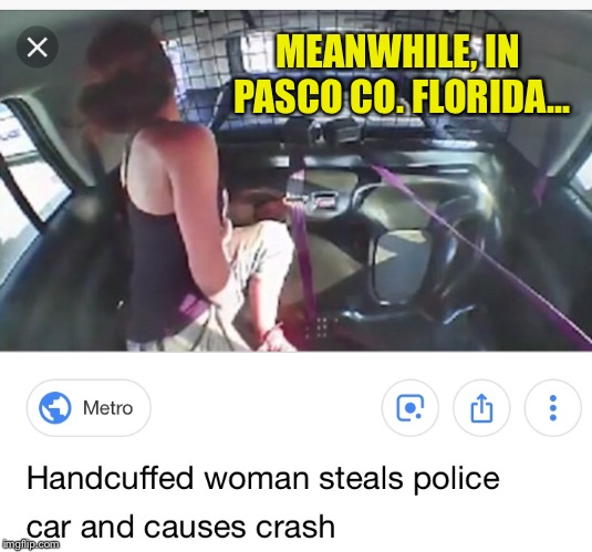 MEANWHILE, IN PASCO CO. FLORIDA... | made w/ Imgflip meme maker