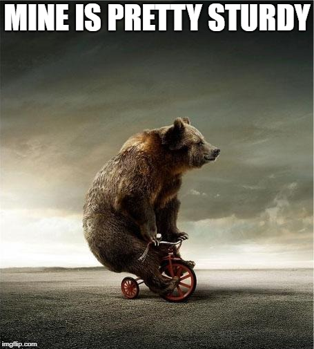 bear bicycle | MINE IS PRETTY STURDY | image tagged in bear bicycle | made w/ Imgflip meme maker