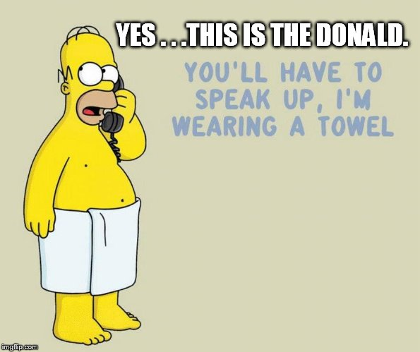 I think I insulted Homer. | YES . . .THIS IS THE DONALD. | image tagged in donald trump small brain | made w/ Imgflip meme maker