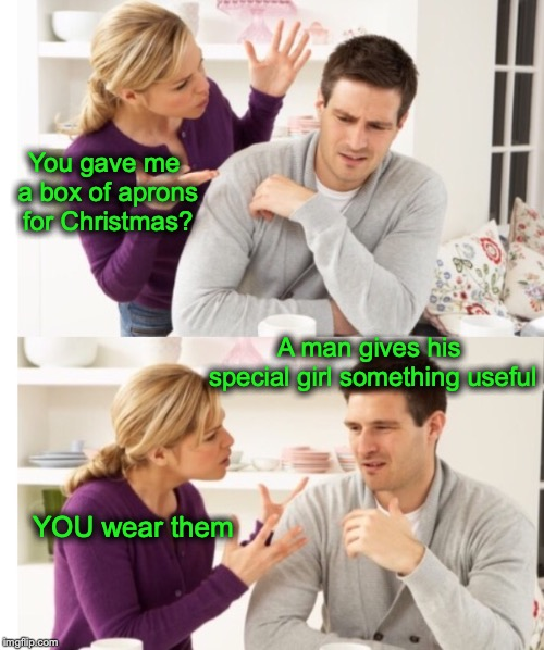 The Wrong Stuff | You gave me a box of aprons for Christmas? A man gives his special girl something useful YOU wear them | image tagged in arguing couple 1,christmas presents | made w/ Imgflip meme maker