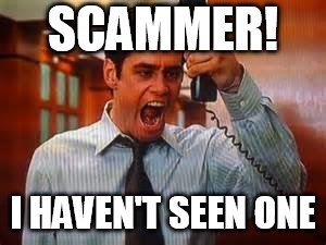 Liar Liar | SCAMMER! I HAVEN'T SEEN ONE | image tagged in liar liar | made w/ Imgflip meme maker
