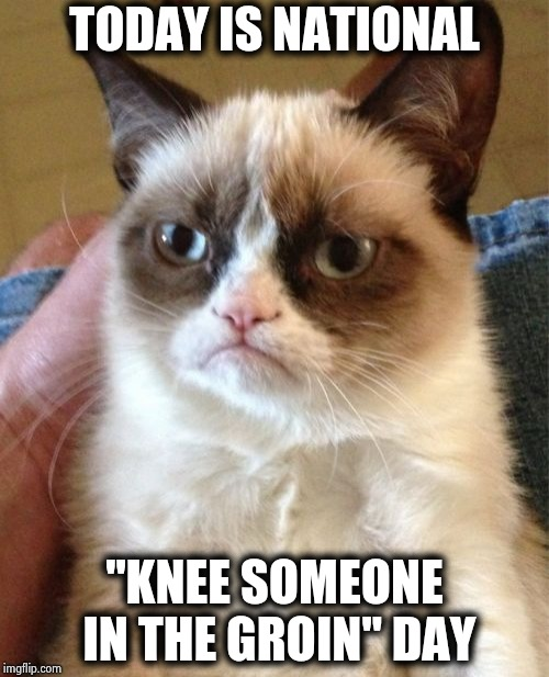 "I made up my own National Holiday | TODAY IS NATIONAL ""KNEE SOMEONE IN THE GROIN"" DAY 