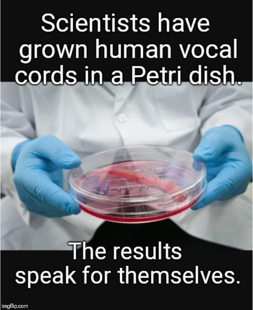 The results speak for themselves | image tagged in science,upvote,medical,puns,dishes | made w/ Imgflip meme maker
