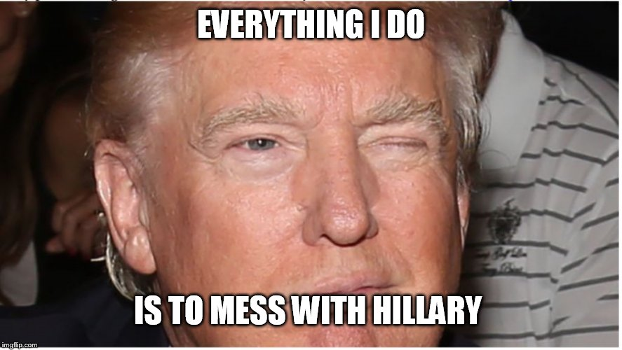 Trump Wink | EVERYTHING I DO IS TO MESS WITH HILLARY | image tagged in trump wink | made w/ Imgflip meme maker