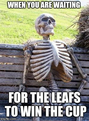 The truth | WHEN YOU ARE WAITING FOR THE LEAFS TO WIN THE CUP | image tagged in memes,waiting skeleton | made w/ Imgflip meme maker