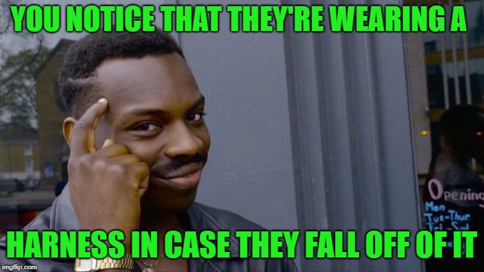 Roll Safe Think About It Meme | YOU NOTICE THAT THEY'RE WEARING A HARNESS IN CASE THEY FALL OFF OF IT | image tagged in memes,roll safe think about it | made w/ Imgflip meme maker