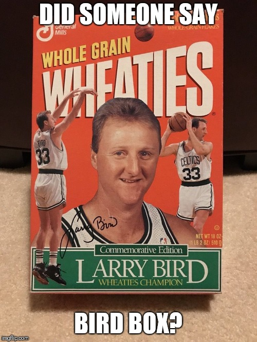 The Original Bird Box | DID SOMEONE SAY BIRD BOX? | image tagged in bird box,puns,celtics,basketball,jokes | made w/ Imgflip meme maker