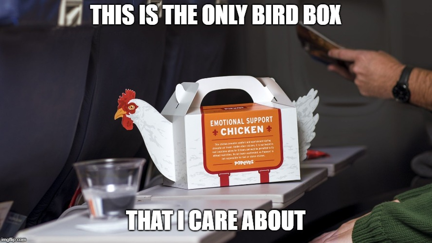 Dangit, now I'm hungry. | THIS IS THE ONLY BIRD BOX THAT I CARE ABOUT | image tagged in bird box,popeyes,fried chicken,i'm hungry,emotional support | made w/ Imgflip meme maker