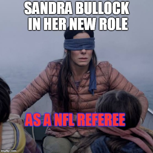 welcome to the nfl | SANDRA BULLOCK IN HER NEW ROLE AS A NFL REFEREE | image tagged in birdbox,blind,nfl referee | made w/ Imgflip meme maker