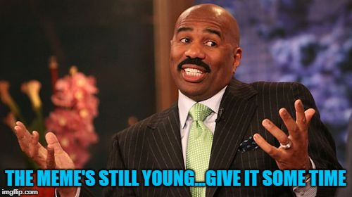 Steve Harvey Meme | THE MEME'S STILL YOUNG...GIVE IT SOME TIME | image tagged in memes,steve harvey | made w/ Imgflip meme maker