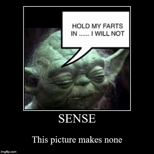Only Star Wars Fans will find this funny | SENSE | This picture makes none | image tagged in funny,demotivationals,yoda,star wars | made w/ Imgflip demotivational maker