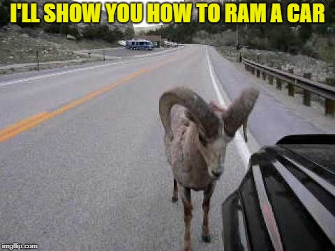 I'LL SHOW YOU HOW TO RAM A CAR | made w/ Imgflip meme maker