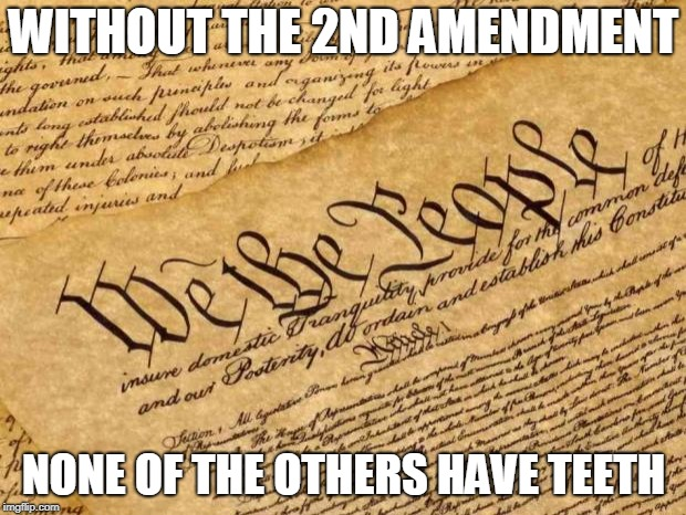 Constitution | WITHOUT THE 2ND AMENDMENT NONE OF THE OTHERS HAVE TEETH | image tagged in constitution | made w/ Imgflip meme maker