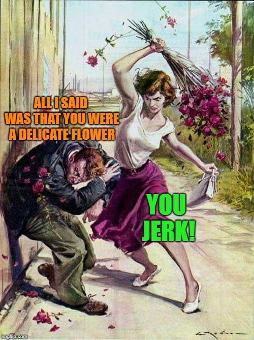 Beaten with Roses | ALL I SAID WAS THAT YOU WERE A DELICATE FLOWER YOU JERK! | image tagged in beaten with roses | made w/ Imgflip meme maker