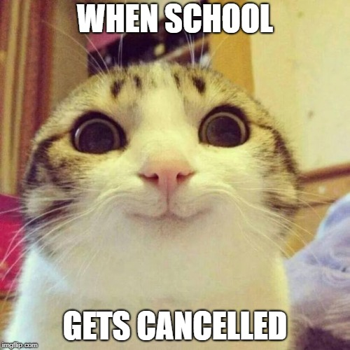 Smiling Cat Meme | WHEN SCHOOL GETS CANCELLED | image tagged in memes,smiling cat | made w/ Imgflip meme maker
