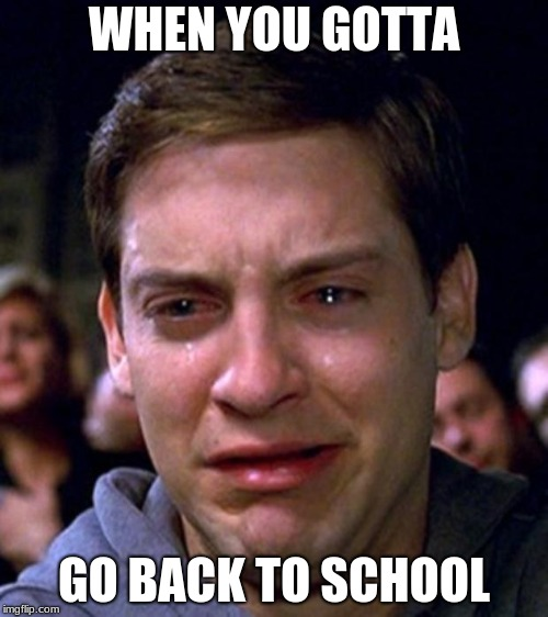 crying peter parker | WHEN YOU GOTTA GO BACK TO SCHOOL | image tagged in crying peter parker | made w/ Imgflip meme maker