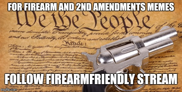 2nd Amendment | FOR FIREARM AND 2ND AMENDMENTS MEMES FOLLOW FIREARMFRIENDLY STREAM | image tagged in 2nd amendment | made w/ Imgflip meme maker