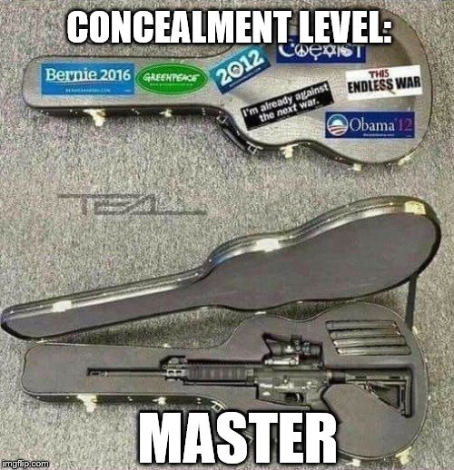 Dont judge a book by its cover... Or a guitar case by its stickers! | CONCEALMENT LEVEL: MASTER | image tagged in guns,dont judge me,funny pictures,level expert,camouflage,no way | made w/ Imgflip meme maker