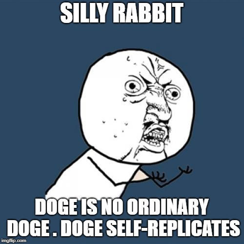 Y U No Meme | SILLY RABBIT DOGE IS NO ORDINARY DOGE . DOGE SELF-REPLICATES | image tagged in memes,y u no | made w/ Imgflip meme maker
