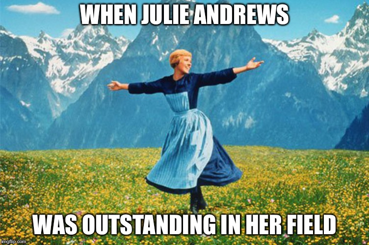 WHEN JULIE ANDREWS WAS OUTSTANDING IN HER FIELD | image tagged in woman in a field of flowers | made w/ Imgflip meme maker