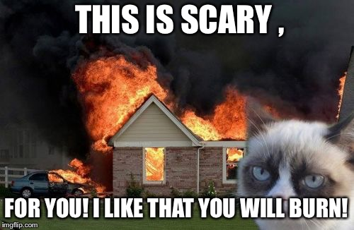 Burn Kitty | THIS IS SCARY , FOR YOU! I LIKE THAT YOU WILL BURN! | image tagged in memes,burn kitty,grumpy cat | made w/ Imgflip meme maker
