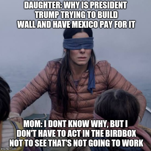 Bird Box Meme | DAUGHTER: WHY IS PRESIDENT TRUMP TRYING TO BUILD WALL AND HAVE MEXICO PAY FOR IT MOM: I DONT KNOW WHY, BUT I DON'T HAVE TO ACT IN THE BIRDBO | image tagged in birdbox | made w/ Imgflip meme maker