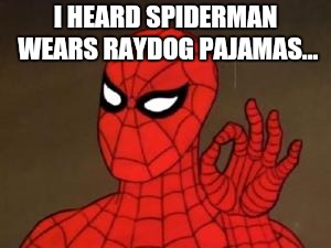 spiderman approves | I HEARD SPIDERMAN WEARS RAYDOG PAJAMAS... | image tagged in spiderman approves,meme,memes,joke,humor,funny | made w/ Imgflip meme maker