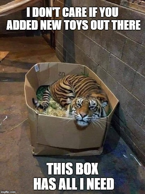 The best gift for any cat, any size |  I DON'T CARE IF YOU ADDED NEW TOYS OUT THERE; THIS BOX HAS ALL I NEED | image tagged in tiger,box,cat,meme,cat in a box | made w/ Imgflip meme maker