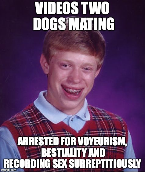 Bad Luck Brian Meme | VIDEOS TWO DOGS MATING ARRESTED FOR VOYEURISM, BESTIALITY AND RECORDING SEX SURREPTITIOUSLY | image tagged in memes,bad luck brian,sexual predator,pervert | made w/ Imgflip meme maker
