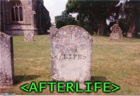 Here lies a programmer who loved his work | <AFTERLIFE> | image tagged in memes,tombstone,programmers,funny,coding | made w/ Imgflip meme maker