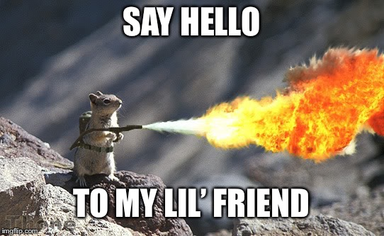 Flame War Squirrel | SAY HELLO TO MY LIL' FRIEND | image tagged in flame war squirrel | made w/ Imgflip meme maker
