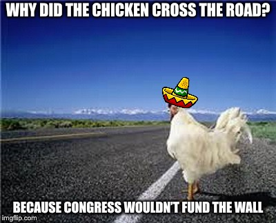 WHY DID THE CHICKEN CROSS THE ROAD? BECAUSE CONGRESS WOULDN'T FUND THE WALL | image tagged in why did the chicken cross the road | made w/ Imgflip meme maker