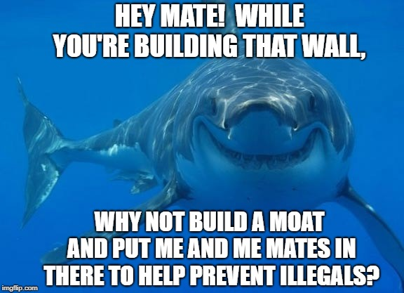 HEY MATE!  WHILE YOU'RE BUILDING THAT WALL, WHY NOT BUILD A MOAT AND PUT ME AND ME MATES IN THERE TO HELP PREVENT ILLEGALS? | image tagged in smiling shark | made w/ Imgflip meme maker