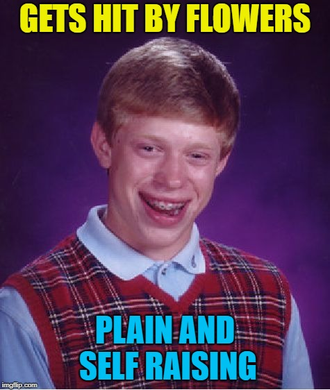 Bad Luck Brian Meme | GETS HIT BY FLOWERS PLAIN AND SELF RAISING | image tagged in memes,bad luck brian | made w/ Imgflip meme maker