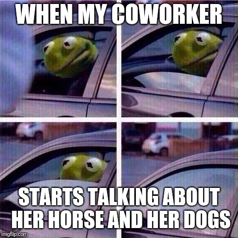Kermit window roll up | WHEN MY COWORKER STARTS TALKING ABOUT HER HORSE AND HER DOGS | image tagged in kermit window roll up | made w/ Imgflip meme maker