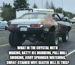 Seriously? | WHAT IN THE CRYSTAL METH MAKING, NATTY ICE DRINKING, PALL MALL SMOKING, JERRY SPRINGER WATCHING, SWEAT-STAINED WIFE BEATER HELL IS THIS? | image tagged in what,ugly muscle car | made w/ Imgflip meme maker