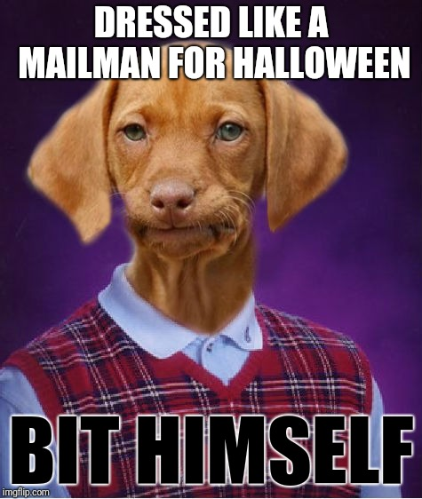 Better late than never? I write down meme ideas in a pocket notebook, but somehow overlooked this one. | DRESSED LIKE A MAILMAN FOR HALLOWEEN BIT HIMSELF | image tagged in bad luck raydog,memes,happy halloween,mailman,costume | made w/ Imgflip meme maker
