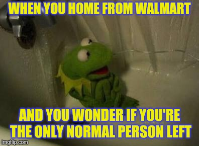 Kermit | WHEN YOU HOME FROM WALMART AND YOU WONDER IF YOU'RE THE ONLY NORMAL PERSON LEFT | image tagged in kermit shower,people of walmart | made w/ Imgflip meme maker