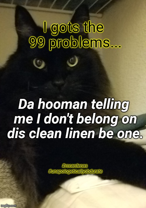 I Gots The 99 Problems  | I gots the 99 problems... Da hooman telling me I don't belong on dis clean linen be one. #rccardenas #unapologeticallyobdurate | image tagged in black cat,humor,cat,problems,human,funny cat memes | made w/ Imgflip meme maker