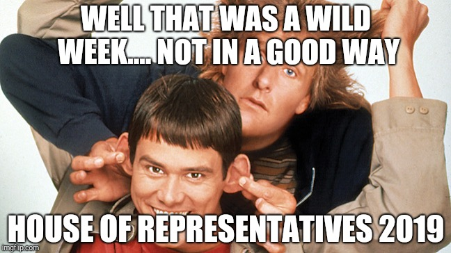 dumb and dumber | WELL THAT WAS A WILD WEEK.... NOT IN A GOOD WAY HOUSE OF REPRESENTATIVES 2019 | image tagged in dumb and dumber | made w/ Imgflip meme maker