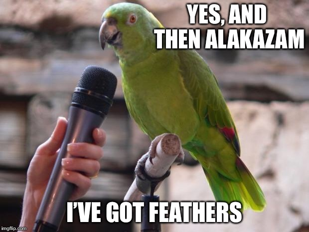 parrot | YES, AND THEN ALAKAZAM I'VE GOT FEATHERS | image tagged in parrot | made w/ Imgflip meme maker
