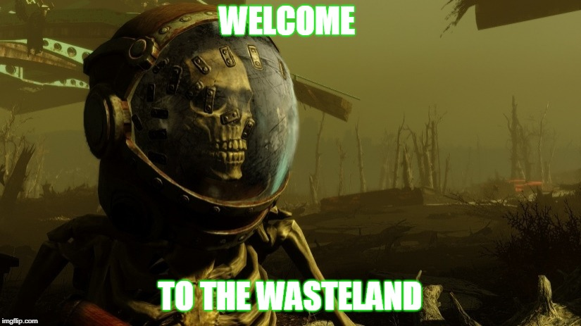 WELCOME TO THE WASTELAND | image tagged in rad skeleton | made w/ Imgflip meme maker
