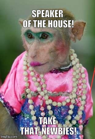Monkey make up | SPEAKER OF THE HOUSE! TAKE THAT, NEWBIES! | image tagged in monkey make up | made w/ Imgflip meme maker