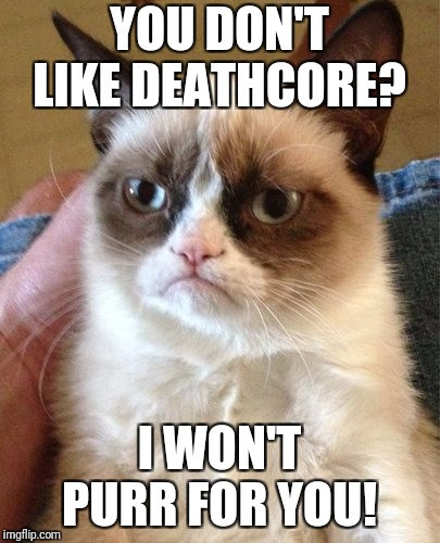 Grumpy Cat | YOU DON'T LIKE DEATHCORE? I WON'T PURR FOR YOU! | image tagged in grumpy cat | made w/ Imgflip meme maker