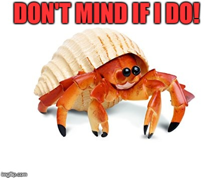Hermit Crab | DON'T MIND IF I DO! | image tagged in hermit crab | made w/ Imgflip meme maker