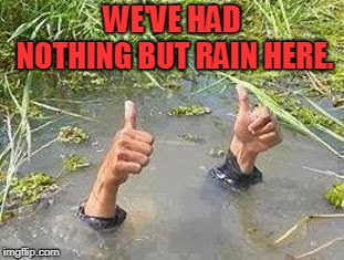 FLOODING THUMBS UP | WE'VE HAD NOTHING BUT RAIN HERE. | image tagged in flooding thumbs up | made w/ Imgflip meme maker