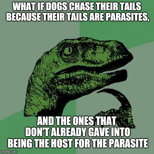 Philosoraptor Meme | WHAT IF DOGS CHASE THEIR TAILS BECAUSE THEIR TAILS ARE PARASITES, AND THE ONES THAT DON'T ALREADY GAVE INTO BEING THE HOST FOR THE PARASITE | image tagged in memes,philosoraptor | made w/ Imgflip meme maker