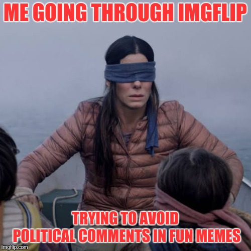 Bird Box | ME GOING THROUGH IMGFLIP TRYING TO AVOID POLITICAL COMMENTS IN FUN MEMES | image tagged in birdbox | made w/ Imgflip meme maker