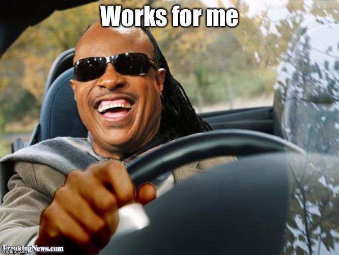 Stevie Wonder Driving | Works for me | image tagged in stevie wonder driving | made w/ Imgflip meme maker
