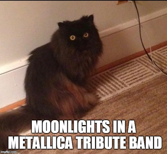 MOONLIGHTS IN A METALLICA TRIBUTE BAND | made w/ Imgflip meme maker